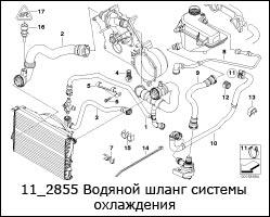 11_2855-Водяной-шланг-системы-охлаждения
