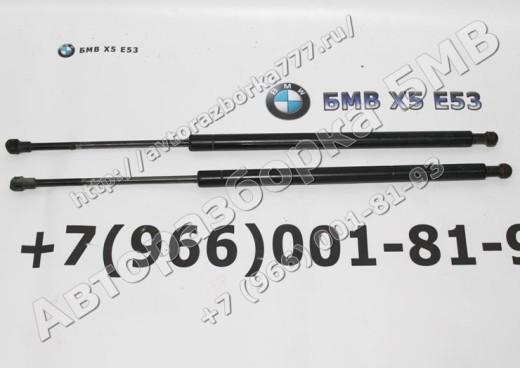 Газонаполненный амортизатор переднего капота бмв х5 е53