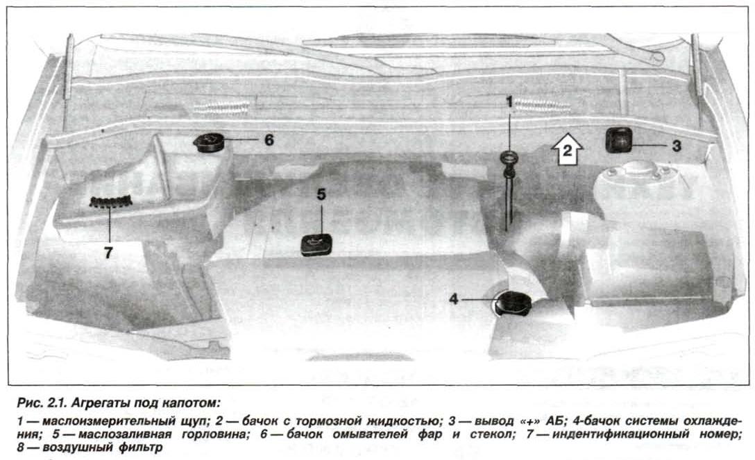 Рис. 2.1. Агрегаты под капотом БМВ Х5 Е53